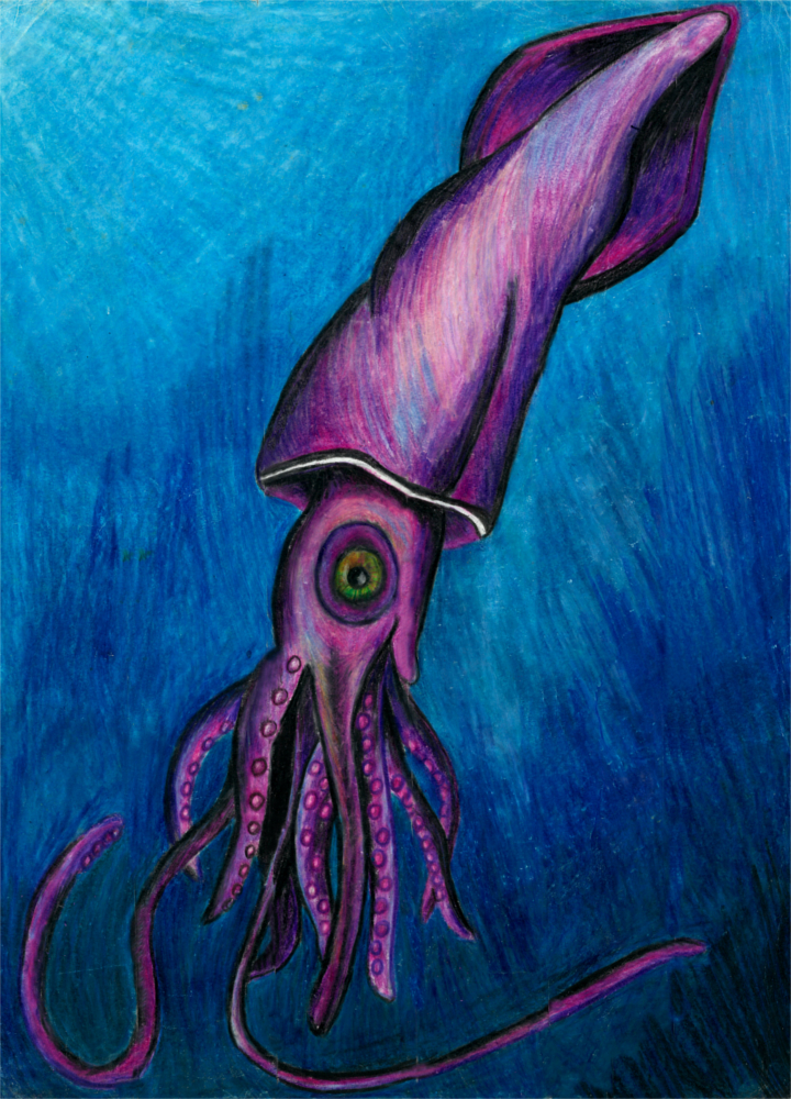 Squid - 2010 - Colored Pencil - Restored from an optical illusion project in high school, the other half is still in the restoration process